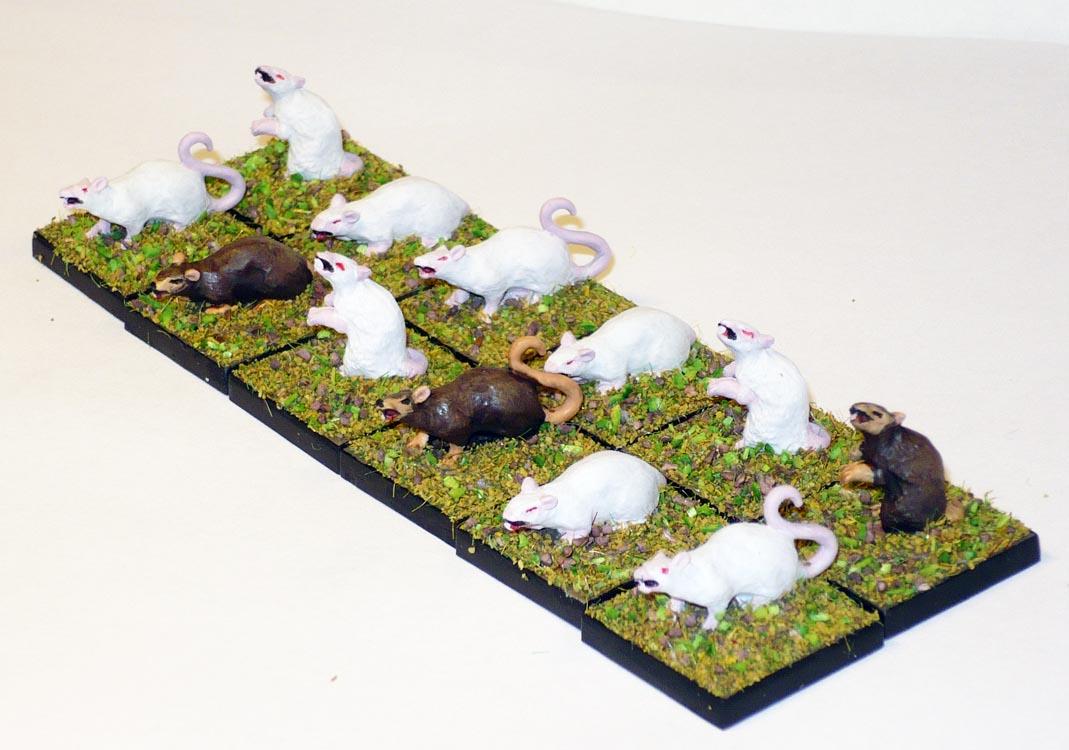 150315-rats.jpg