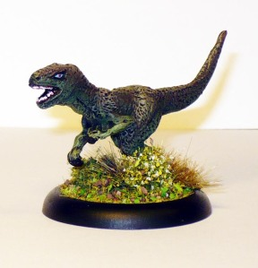 150708 harlequin raptor