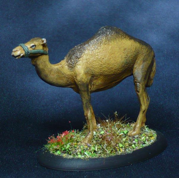 171009-reaper-bones-3-80075-camel-w-pack